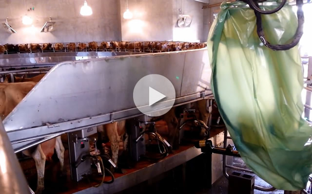 Click here to watch video footage from a recent installation of the RotaryMATE EXPD